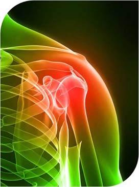 Imagen radiográfica del hombro.